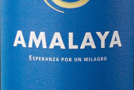 Amalaya 2011 by Hess (Argentine, Salta)