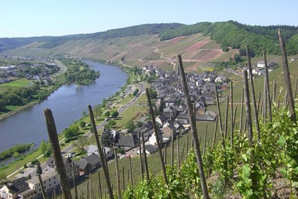 Mosel allemande en péril / The German Mosel region threatened