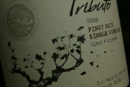 Quick review : Tributo Pinot Noir Single Vineyard 2009 by Caliterra (Chili, Casablanca)