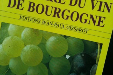 Livre : Histoire du vin de bourgogne by Jean-François Bazin